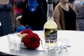 Saint-Fiacre - Syndicat d'Initiative de La Reid - Merveille de la Charmille